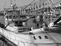 Squid_Fishing_Boat
